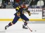 Toronto Maple Leafs: Week Recap – November 17-24,2015